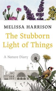 The Stubborn Light of Things : A Nature Diary-9780571363506