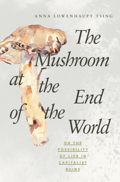 The Mushroom at the End of the World : On the Possibility of Life in Capitalist Ruins-9780691178325