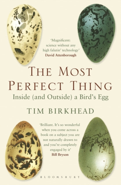 The Most Perfect Thing : Inside (and Outside) a Bird's Egg-9781408851272