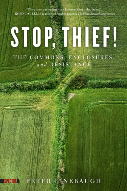 Stop, Thief! : The Commons, Enclosures, And Resistance-9781604867473