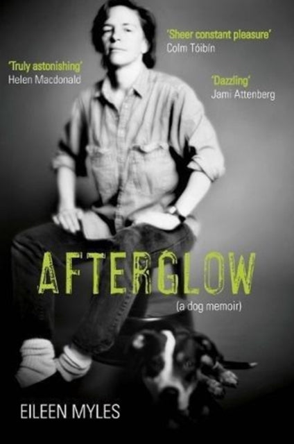 Afterglow : A Dog Memoir-9781611855098