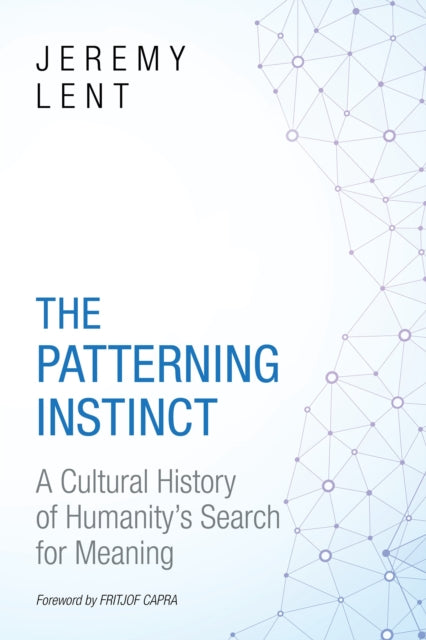 The Patterning Instinct : A Cultural History of Humanity's Search for Meaning-9781633882935
