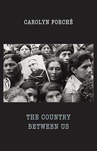 The Country Between Us-9781780373744