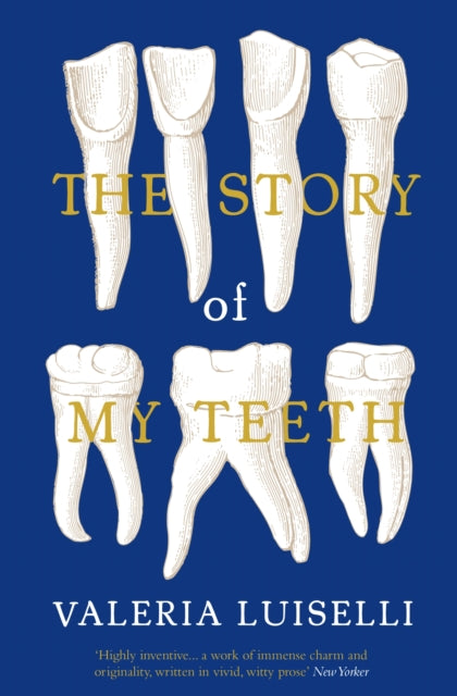 The Story of My Teeth-9781783780822