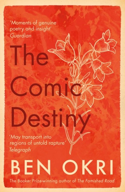 The Comic Destiny-9781788549653