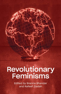 Revolutionary Feminisms : Conversations on Collective Action and Radical Thought-9781788737760