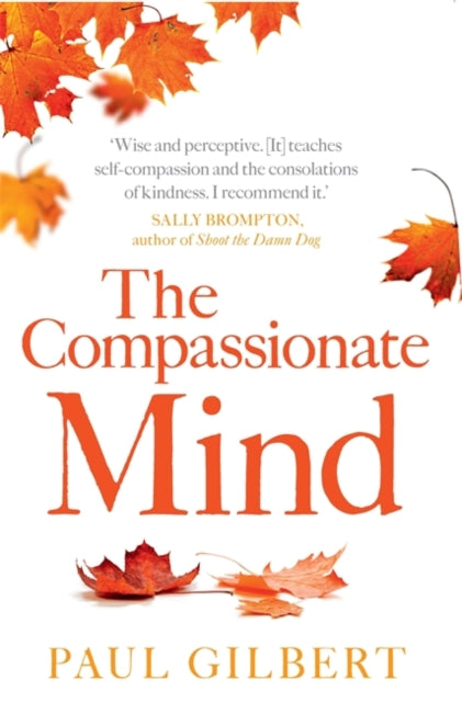 The Compassionate Mind-9781849010986