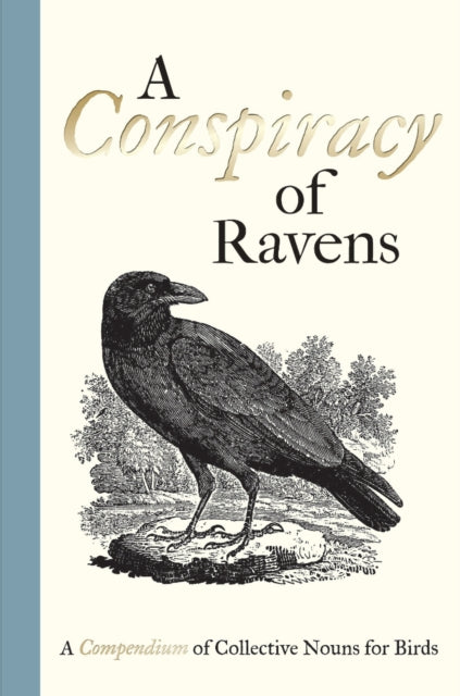 A Conspiracy of Ravens : A Compendium of Collective Nouns for Birds-9781851244096