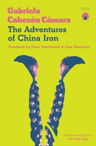 The Adventures of China Iron-9781916465664