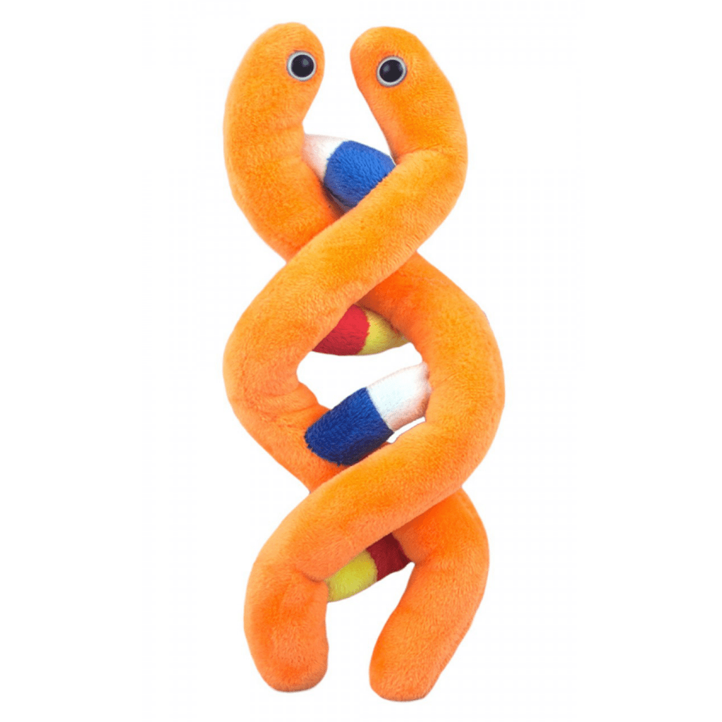 Giant Microbes - DNA (Deoxyribonucleic Acid) - Planet Microbe
