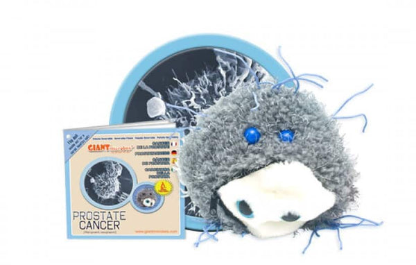 Giant Microbes - Prostate Cancer - Planet Microbe