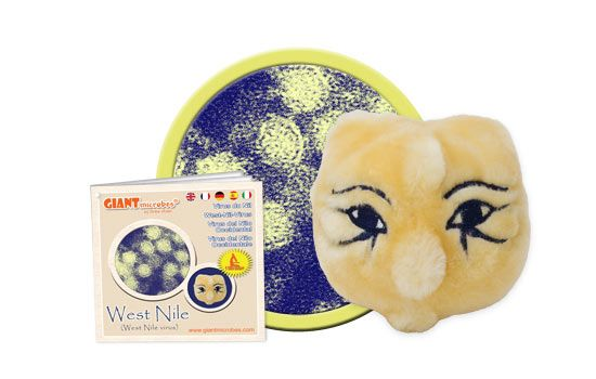 Giant Microbes Original West Nile Virus