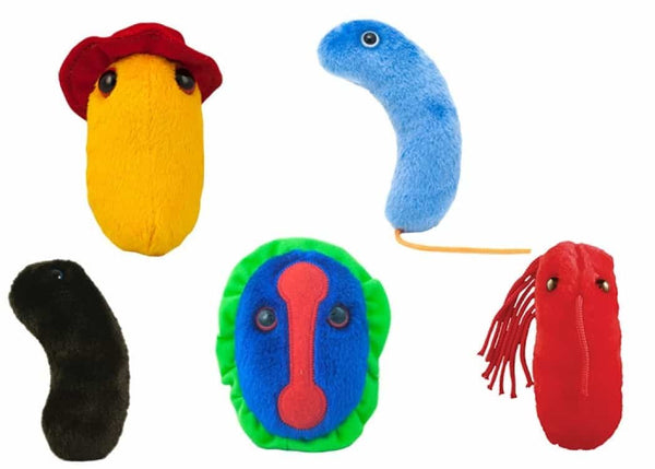 Giant Microbes Plagues From History Themed Box Set - Planet Microbe