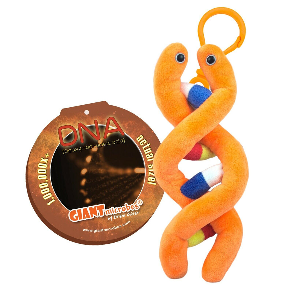 Giant Microbes DNA 2 Pack Original DNA and Keyring