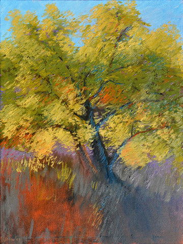 The Maple in Light - Original Painting, 18x24in.