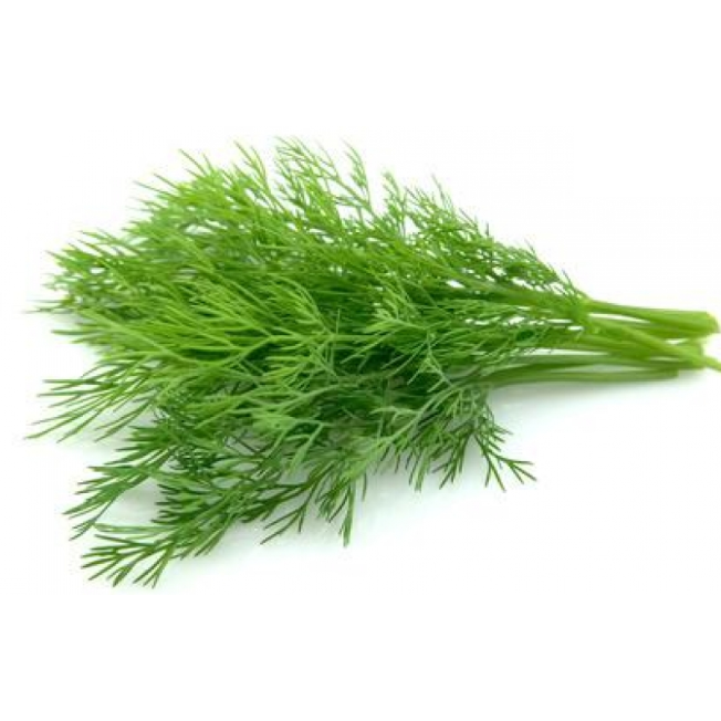 DILL<br> (50g)