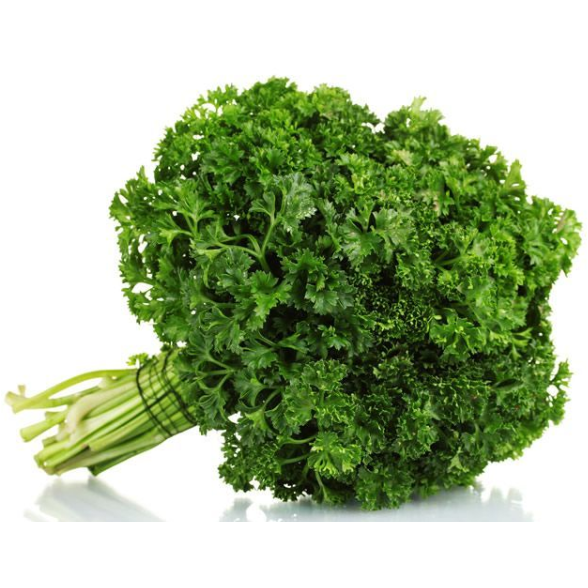 PARSLEY CURLY<br> (50g)
