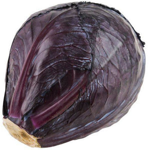 CABBAGE RED <br>(Each)
