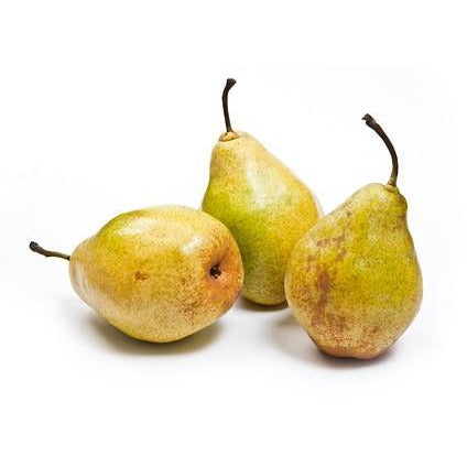 PEAR CONFERENCE<br>(1Kg)