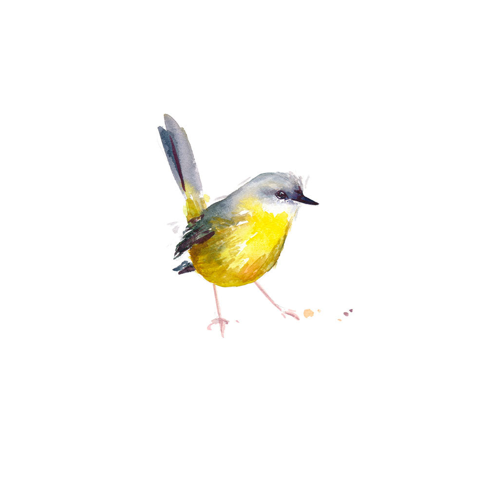 'Eastern Yellow Robin' Limited Edition Print