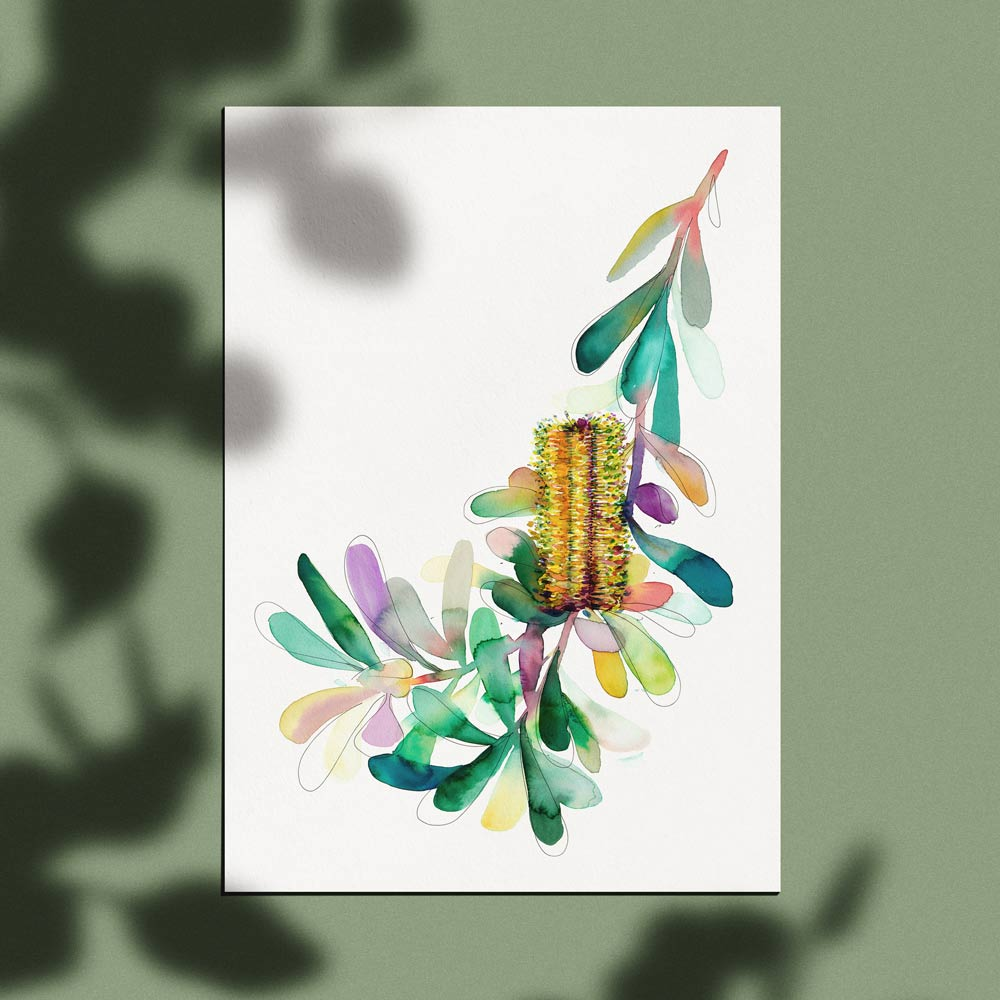 'Gilbert's Banksia' Limited Edition Print