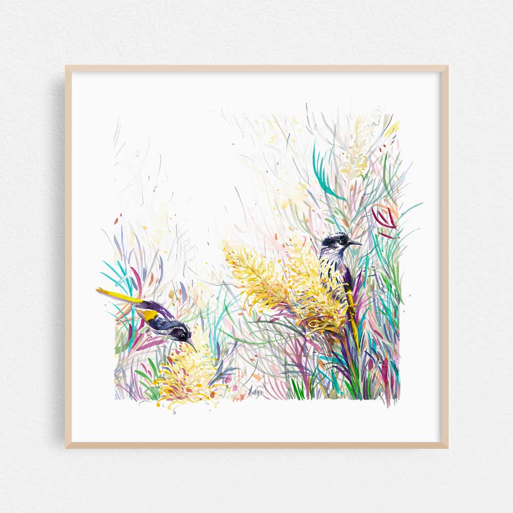 'Honeyeaters in the Moonlight' Limited Edition Print