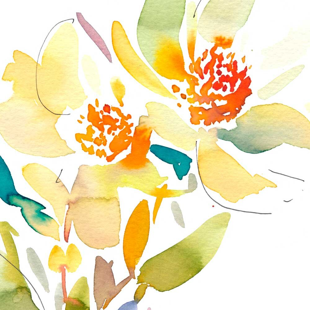 'Leucadendron Discolor' Limited Edition Print