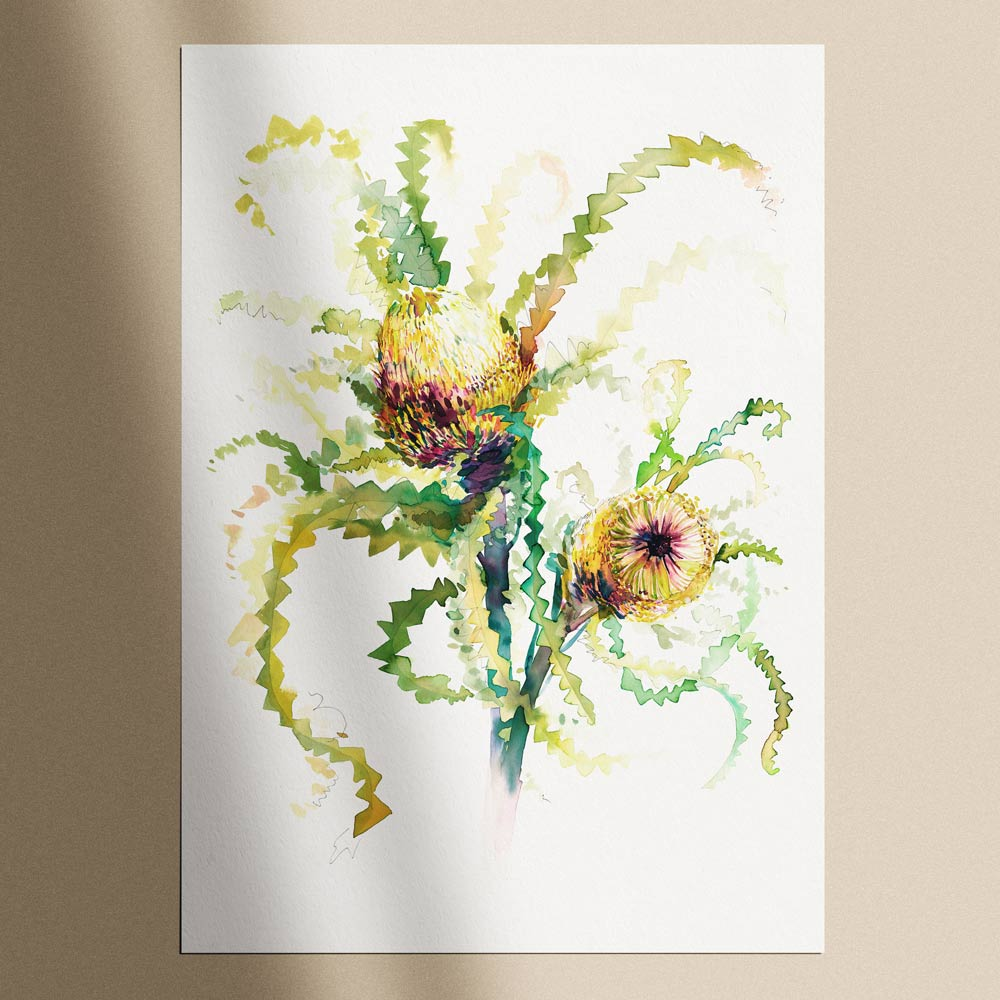 'The Neighbour's Neighbour Banksia' Limited Edition Print