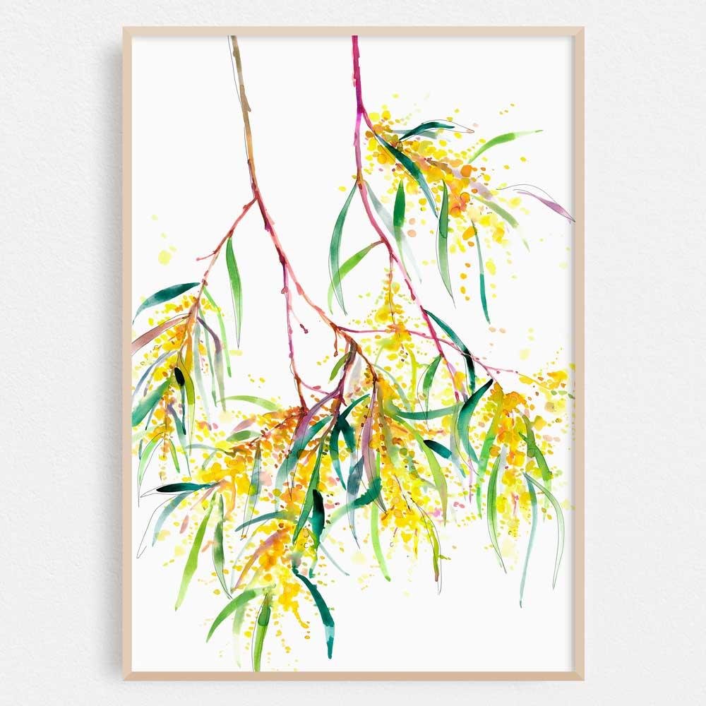 'Roadside Wattle' Limited Edition Print