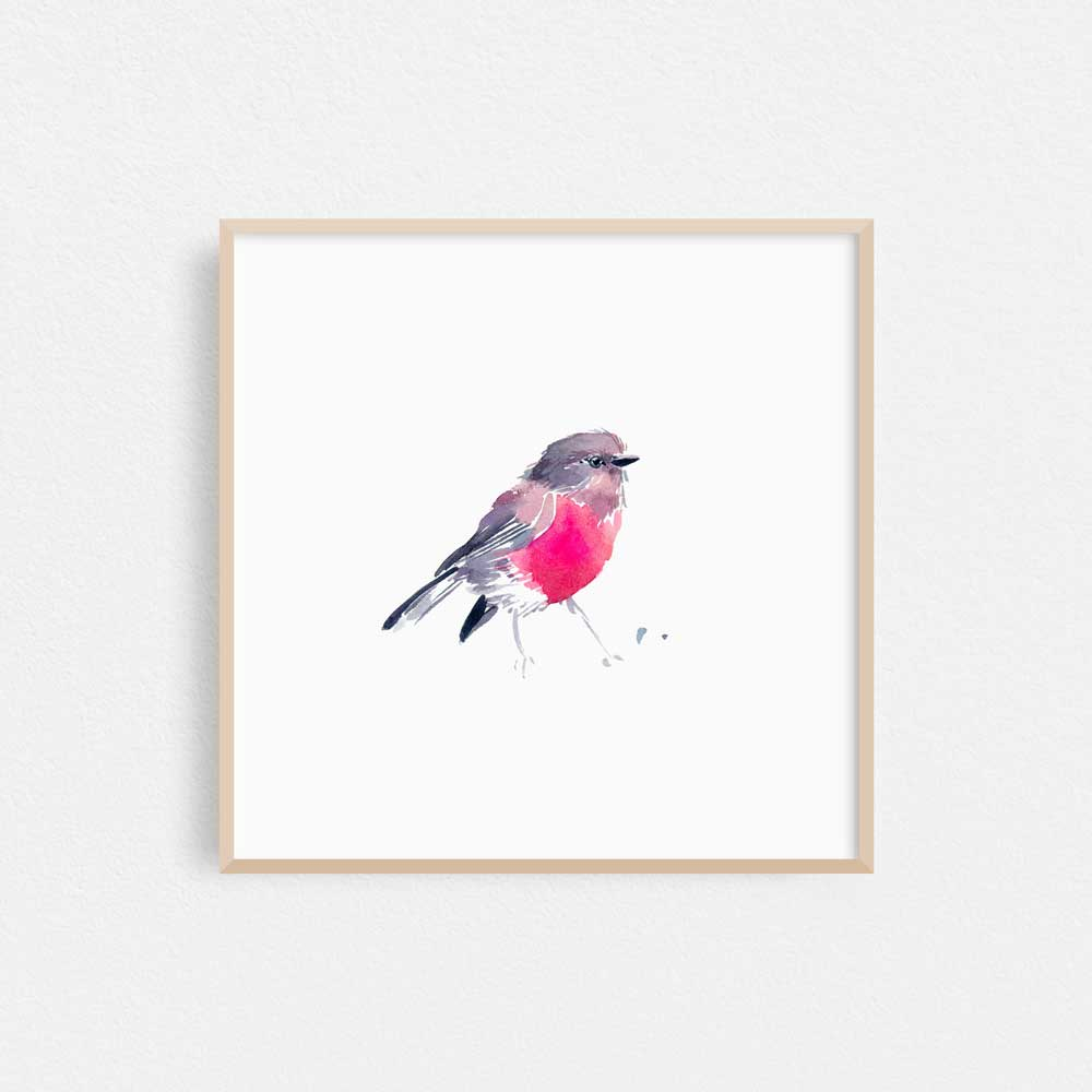 'Rose Robin' Limited Edition Print