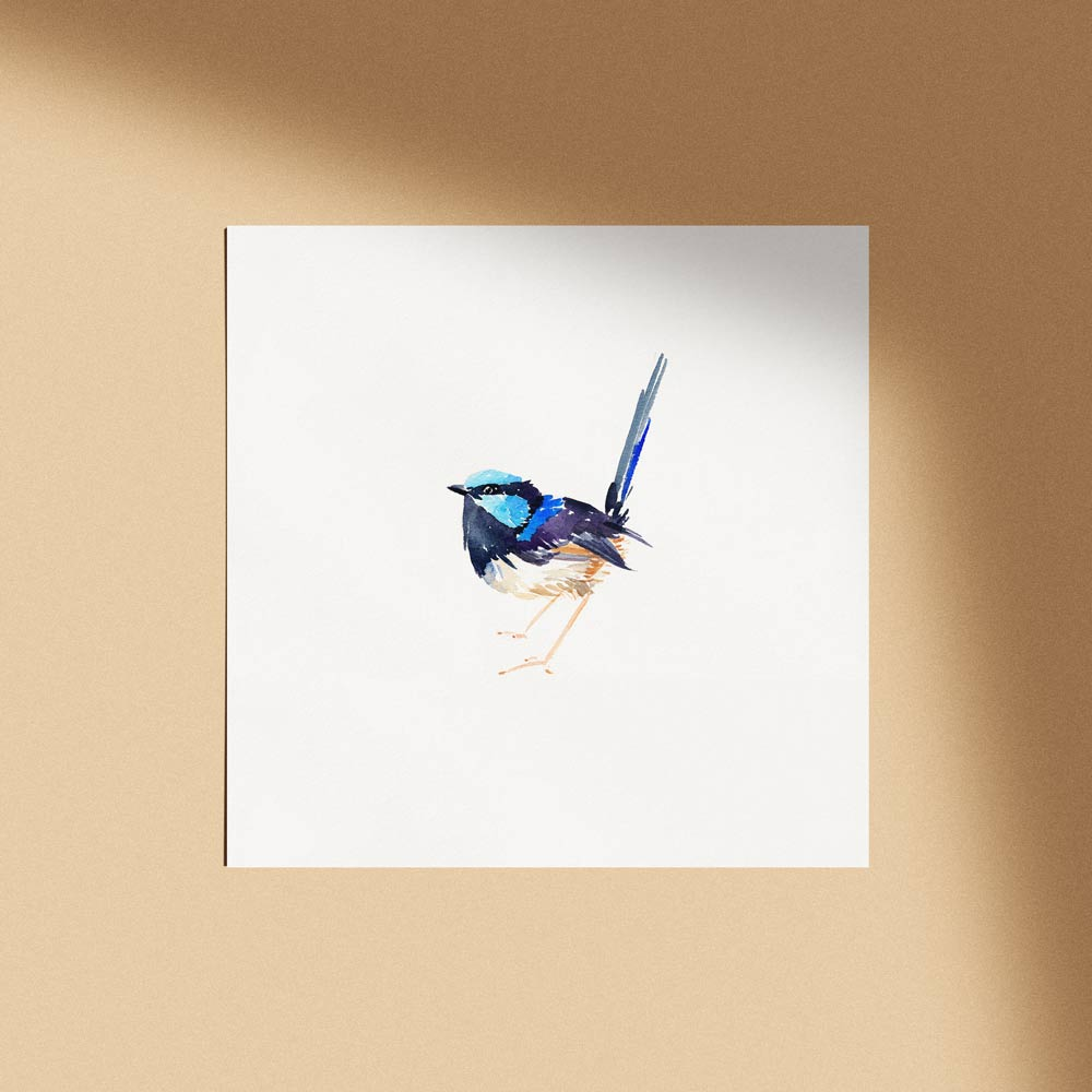 'Superb Fairy Wren Male' Limited Edition Print