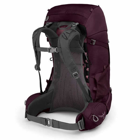 Osprey Renn Women's Hiking Backpack Aurora Purple harness