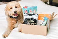 Eco Friendly Subscription Box For Dogs Subscribe Now Pure Earth Pets