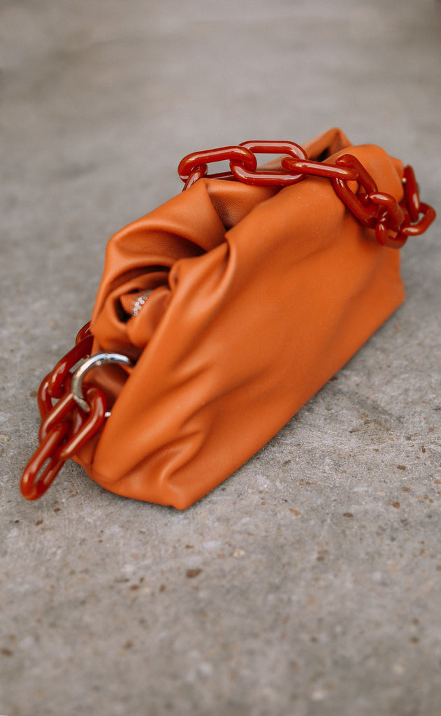 camelback chain link purse