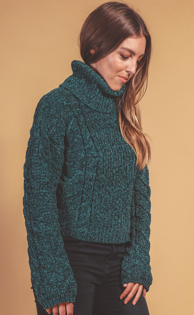 blank nyc: green thumb sweater