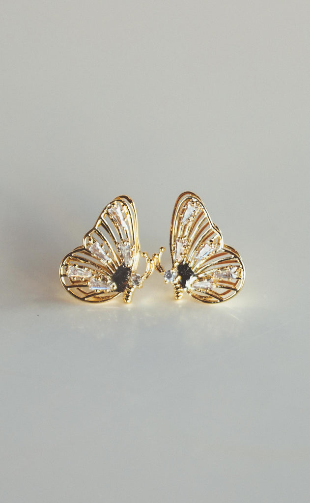bracha: molly monarch studs