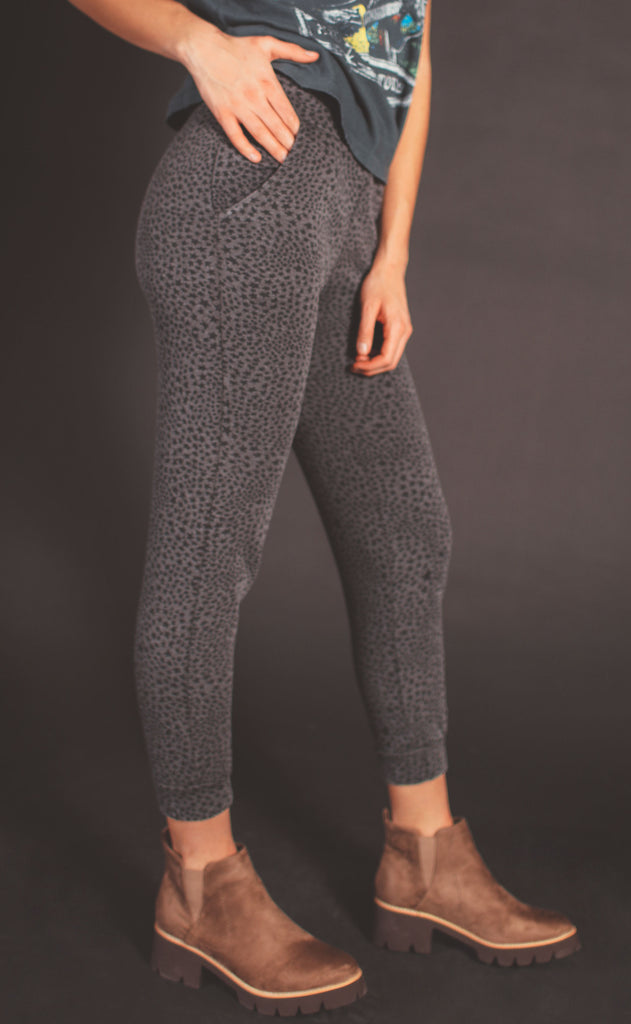 z supply: cadence stardust jogger - charcoal