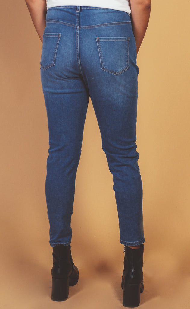 gabby high rise skinny jean - extended