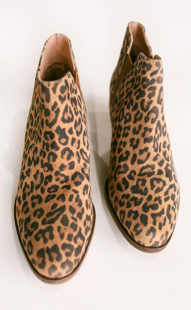 seychelles: waiting for you leopard bootie