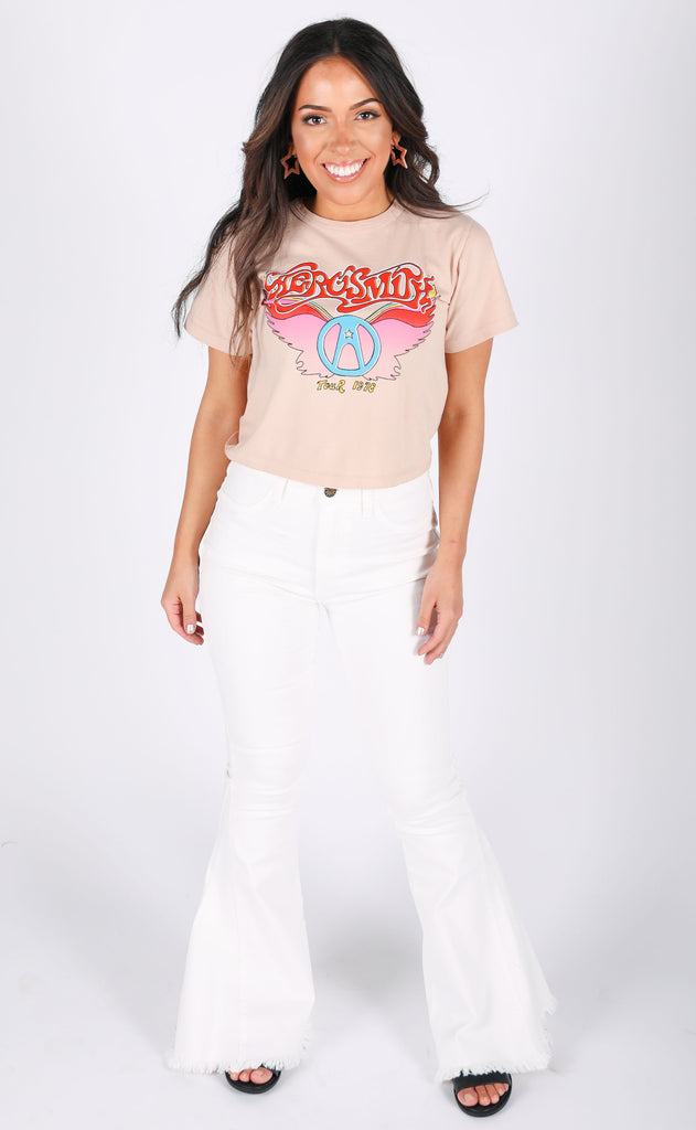 daydreamer: aerosmith wings rebel crop tee