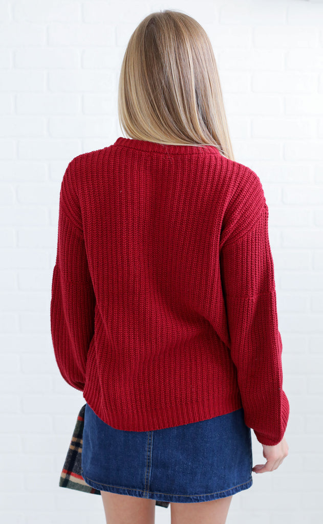 amuse society: rodas sweater