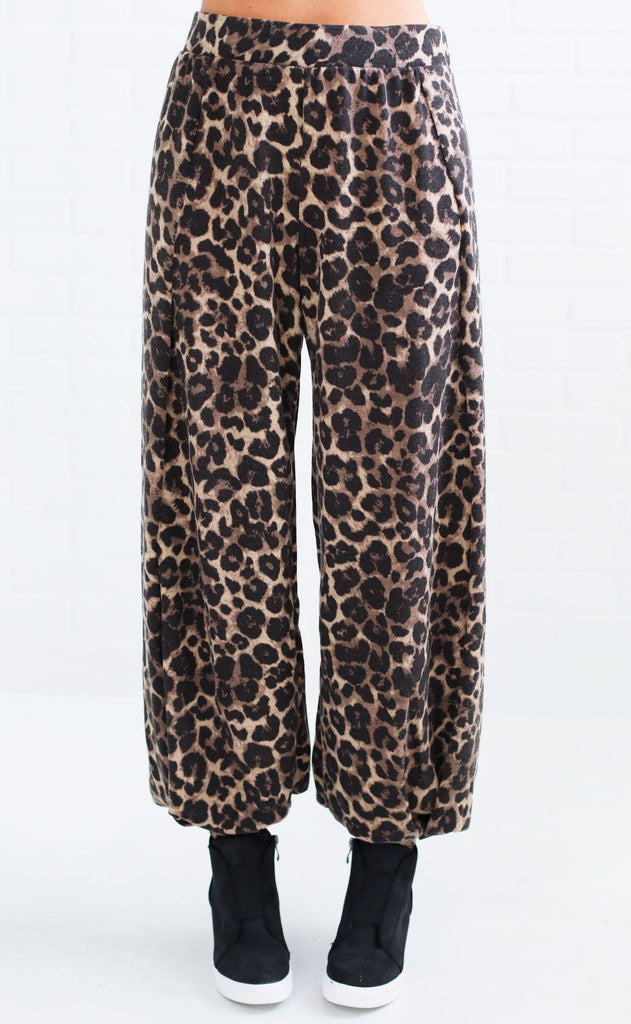 go wild printed pants