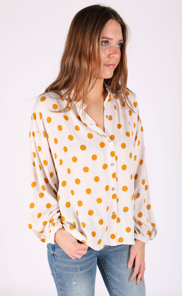 picnic printed top