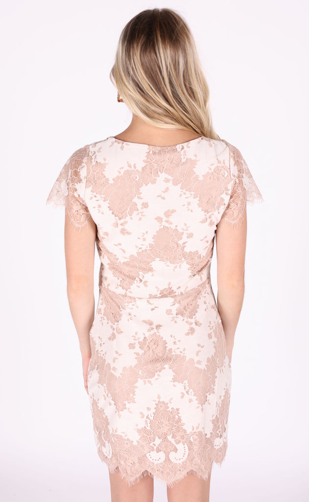 take me out lace dress - cream/beige