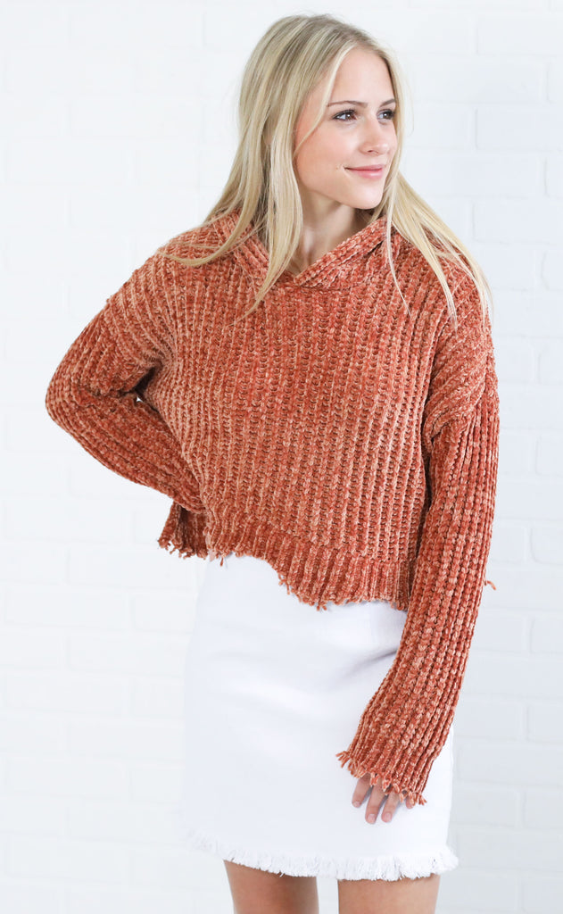 top notch crop sweater - rust