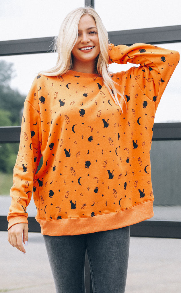 wildfox: roadtrip sweatshirt - mystic
