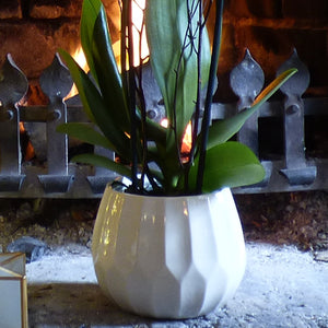 Luxury Orchid in Cream Glazed Ceramic