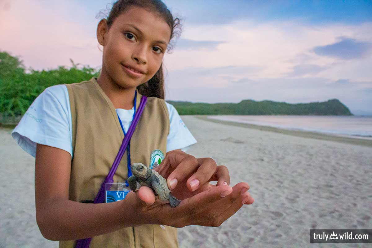 Paso Pacifico junior ranger with sea turtle hatchling