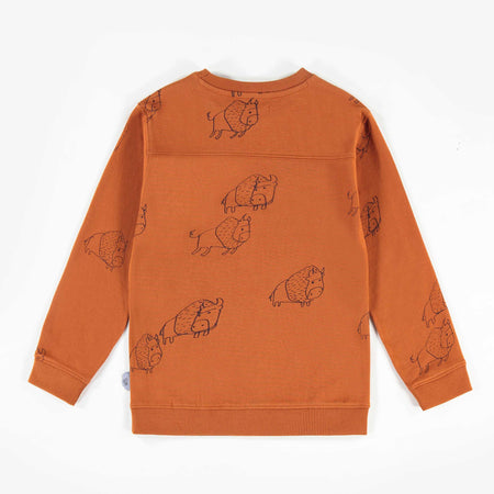 Souris Mini Brown Sweater