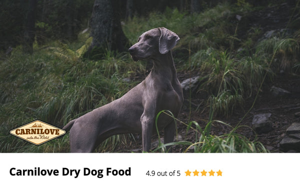 Independent Review of Carnilove Dry Dog Food
